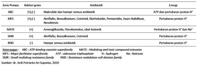 tabel 3 - FAKTA MEDIS TERKAIT RESISTENSI ANTIBIOTIK-min